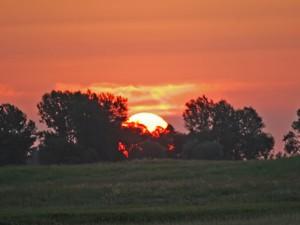 Sunrise DWP©10